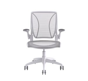 Humanscale Diffrient World Chair White Frame White Mesh