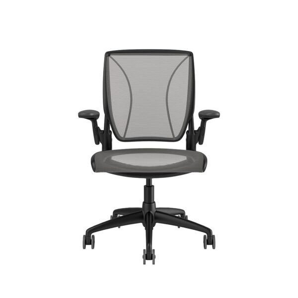 Diffrient World Chair - Black Frame Silver Mesh